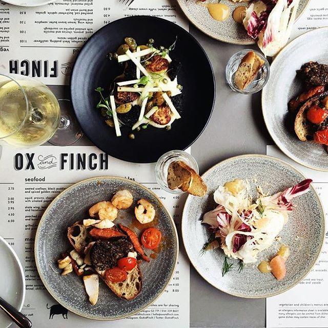 Ox & Finch